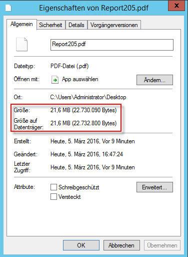 NET_2_PDFGröße